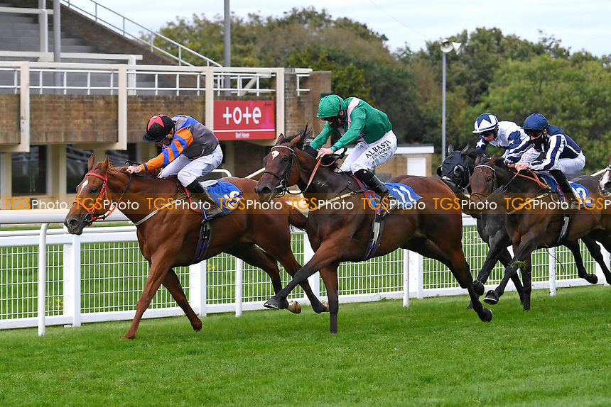 Winner of The Venture Security Handicap Stakes Molly Shaw (11) ridden by Jack Mitchell and trained by Chris Wall       during Horse Racing at Salisbury Racecourse on 11th September 2020