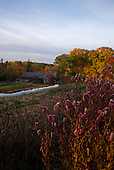 Tarrytown, New York<br /> October 27, 2015<br /> <br /> The Stone Barns Center for Food and Agriculture - sunrise and natural setting. Blue Hill Restaurant at the Stone Barnes Center is also pictured. The Center is a nonprofit farm and education center located just 25 miles north of Manhattan in Pocantico Hills, New York.