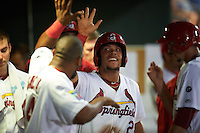 Springfield Cardinals first baseman Jonathan Rodriguez (28) high fives teammates after scoring a run during a game against the Frisco RoughRiders  on June 4, 2015 at Hammons Field in Springfield, Missouri.  Frisco defeated Springfield 8-7.  (Mike Janes/Four Seam Images)