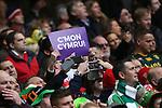 Patriotic Welsh rugby fans<br /> RBS 6 Nations<br /> Wales v Ireland<br /> Millennium Stadium<br /> 14.03.15<br /> ©Steve Pope - SPORTINGWALES
