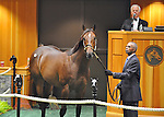 Hip no. 91, a bay colt by Empire Maker (Sluice - Seeking the Gold) sells for $1,100,000 at the Fasig-Tipton Saratoga Selected Yearlings Sale on August 6, 2012 at Humphrey S. Finney Pavilion in Saratoga Springs, New York.  (Bob Mayberger/Eclipse Sportswire)