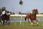 Animal Kingdom with jockey John Velazquez winning his 2012 debut at Gulfstream Park, Hallandale Beach Florida.