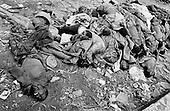 Goma, Zaire<br /> July 1994<br /> <br /> A pile of dead Hutu soldiers is carried off one by one to be buried after fleeing Rwanda. <br /> <br /> Following the 1994 Rwandan Genocide, in which Hutu militia groups and the Hutu lead Rwanda military, killed an estimated 800,000 ethnic Tutsis and sympathizers during a 100-day killing spree, 2 million ethnic Hutu's, fearing reprisals, flee the country. The vast majority went to Goma, Zaire as tens of thousands died in epidemics of cholera and dysentery that swept the roadside crowds and refugee camps. People who had actively participated in the genocide hid among the refugees, fueling the First and Second Congo Wars.<br /> <br /> The international community, and the United Nations in particular, drew severe criticism for its inaction in the wake of the Rwandan Genocide.