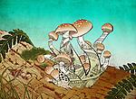 Illustrative image of mushroom growing represents rebuilding from loss