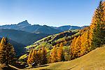 Italien, Suedtirol (Trentino-Alto Adige), Wengen: im Hintergrund der Peitlerkofel   Italy, South Tyrol (Trentino-Alto Adige), La Valle: at background Sass de Putia mountain