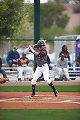 Joab Gonzalez (2) of Puerto Rico HS & BB Acad High School in Arecibo, Puerto Rico during the Under Armour All-American Pre-Season Tournament presented by Baseball Factory on January 14, 2017 at Sloan Park in Mesa, Arizona.  (Zac Lucy/Mike Janes Photography)