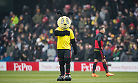 Watford Mascot Harry the Hornet (Gareth Evans retires) - 14.09.2018