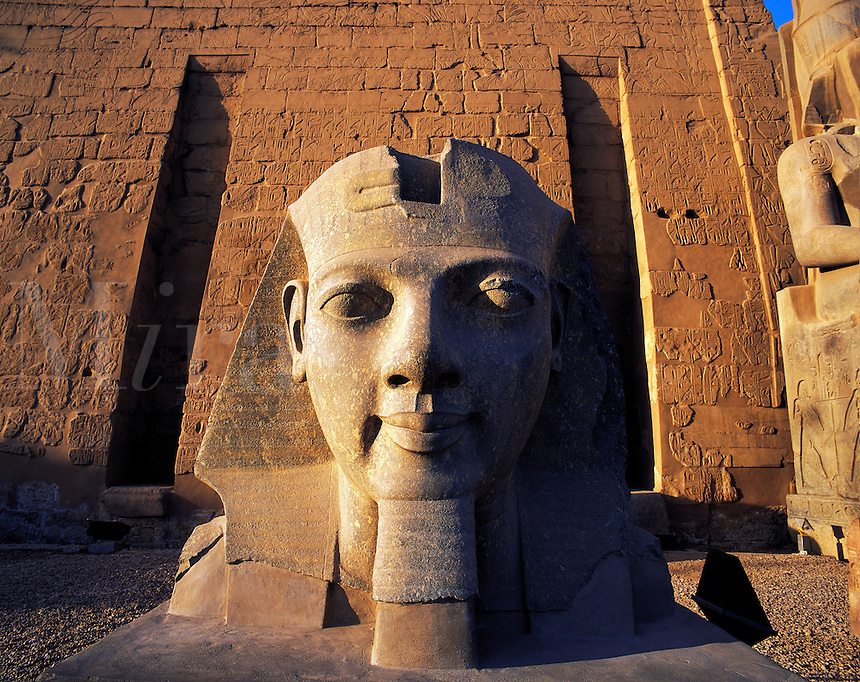 Early morning light on the carved head of Pharoah Rameses II, at the entrance to Luxor temple, Egyp