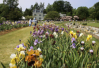 The Presby Iris Garden in Montclair, New Jersey.    It is on Upper Mountain Road and reaches full bloom starting in mid May
