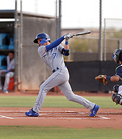 Bobby Witt Jr - 2019 AZL Royals (Bill Mitchell)