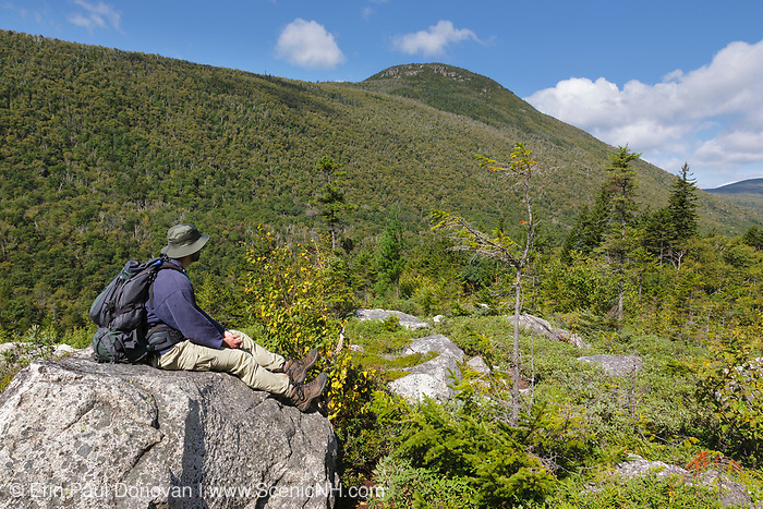 Hiker on the Zeacliff Trail in the White Mountains, New Hampshire during the summer months. Zeacliff Mountain is in the background. This area, near the Zeacliff Trail and Ethan Pond Trail junction, was part of the Zealand Valley Railroad (1886-1897).