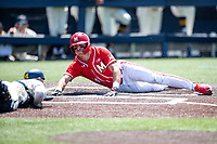 Maryland Terrapins outfielder Troy Schreffler (14) slides head-first at home against the Michigan Wolverines on May 23, 2021 in NCAA baseball action at Ray Fisher Stadium in Ann Arbor, Michigan. Maryland beat the Wolverines 7-3. (Andrew Woolley/Four Seam Images)