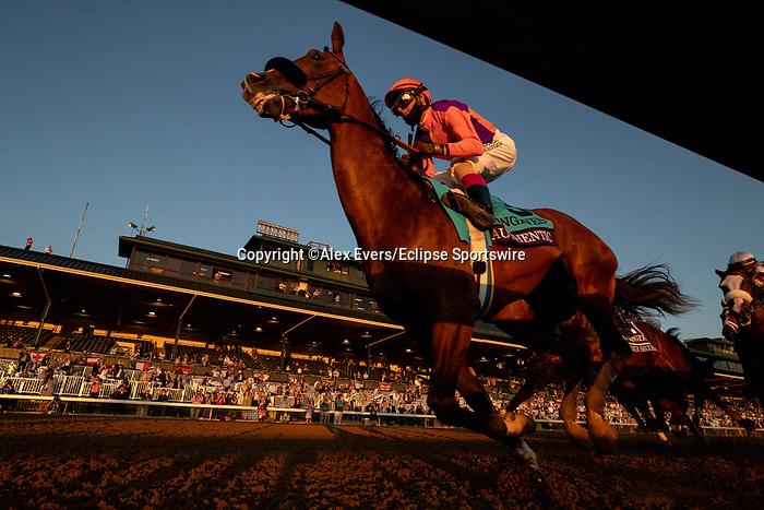 November 7, 2020 : Authentic, ridden by John Velazquez, wins the Longines Classic on Breeders' Cup Championship Saturday at Keeneland Race Course in Lexington, Kentucky on November 7, 2020. Alex Evers/Breeders' Cup/Eclipse Sportswire/CSM
