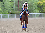 May 15, 2015: Preakness contender Dortmund exercises on the track the day before the big race. Friday morning Preakness preparations at Pimlico Race Course in Baltimore, MD. Joan Fairman Kanes/ESW/CSM