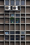 Hongkong, China, Asien, urbane Flora<br />  ***Keine Social_Media Nutzung***<br /> <br /> Engl.: Asia, China, Hong Kong, urban flora, plant, house, facade, bonsai<br /> ***No social media use***