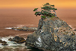 Oregon, Samuel Boardman State Park