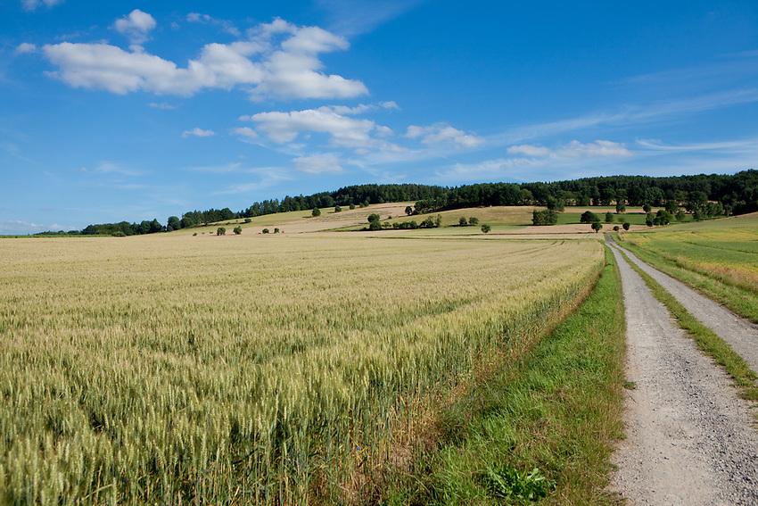 Europa, DEU, Deutschland, Hessen, Schlitzer Land, Agrarlandschaft, Sommer, Himmel, Wolken, Weg, Kategorien und Themen, Landwirtschaft, Landwirtschaftlich, Agrar, Agrarwirtschaft, Wetter, Wetterelemente, Wetterlage, Wetterkunde, Witterung, Witterungsbedingungen, Wettererscheinungen, Meteorologie, Wettervorhersage<br /> <br /> [Fuer die Nutzung gelten die jeweils gueltigen Allgemeinen Liefer-und Geschaeftsbedingungen. Nutzung nur gegen Verwendungsmeldung und Nachweis. Download der AGB unter http://www.image-box.com oder werden auf Anfrage zugesendet. Freigabe ist vorher erforderlich. Jede Nutzung des Fotos ist honorarpflichtig gemaess derzeit gueltiger MFM Liste - Kontakt, Uwe Schmid-Fotografie, Duisburg, Tel. (+49).2065.677997, ..archiv@image-box.com, www.image-box.com]