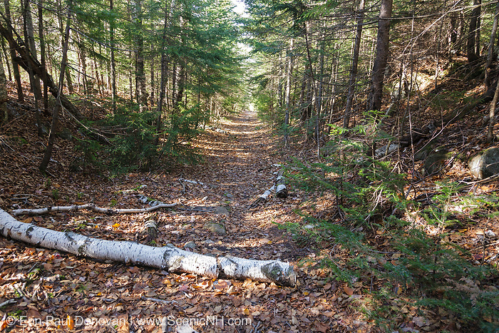 Flat Mountain Pond Trail, near Flat Mountain Ponds, in Waterville Valley, New Hampshire. This trail follows the old logging railroad bed of the Beebe River Railroad.