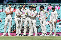 9th January 2021; Sydney Cricket Ground, Sydney, New South Wales, Australia; International Test Cricket, Third Test Day Three, Australia versus India; the Australian team watch a review on the screen
