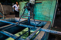 The water solution, containing indigo precursors, is being stirred (to cause oxidation and creation the pigment) in a concrete tank at the semi-industrial manufacture near San Miguel, El Salvador, 12 November 2016. For centuries, indigo, a natural deep blue dye extracted from the leaves of tropical plants (Indigofera), has been known to the native indigenous inhabitants of Central America who used the blue tincture to color their fabrics and pottery. Although demand for natural indigo dropped significantly at the end of 19th century when a synthetic indigo was firstly introduced, commercialization of natural indigo has risen again during the last decades. Small-scale indigo farms, processing the crop on sustainable and ecological basis, are growing throughout the country, returning El Salvador to the place of the main natural indigo producer in Latin America.