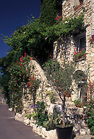 France, St.Paul de Vence, Cote d' Azur, Provence, Alpes-Maritimes, Europe, Flowers and ivy decorate the stone stairs of a stone building in the village of Saint Paul de Vence.