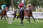 February 21, 2015: Chocolate Ride with Jesus Castanon up wins the Fairgrounds Handicap at the New Orleans Fairgrounds Risen Star Stakes Day. Steve Dalmado/ESW/CSM