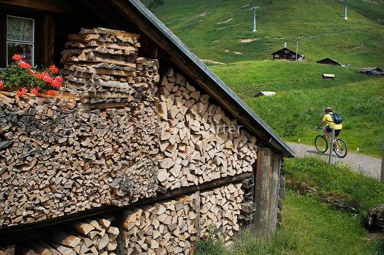 One of the cow sheds above Käsestatt with attached living accomodation (usesd by skiers in the winter) with flower boxes and fire wood stored...Cowherd and cheesemaker spends 100 days in the summer, high up in the mountains, tending cows and pigs and making cheese at Balisalp and Käserstatt near Meiringen, Switzerland.