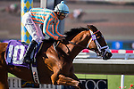AUG 17,2014:Conquest Misbehave,ridden by Mike Smith,wins the maiden race,7R at Del Mar in Del Mar,CA. Kazushi Ishida/ESW/CSM