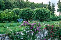 France, Indre-et-Loire, Lémeré, jardins et château du Riveau au printemps, les douves et rosiers grimpants, l'Arbre à souhaits de Leslie O'Meara (bleu)