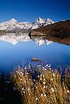 Alp mountains reflected in Riffelsee, Zermatt, Switzerland