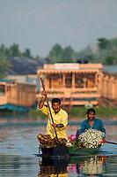Kashmiri flower sellers paddling a traditional Kashmiri shikara, or gondola, at sunrise, Dal Lake, Srinagar, Kashmir, India..