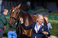 SWE-Malin Petersen rides Charley Brown 311 during the First Horse Inspection. 2021 SUI-FEI European Eventing Championships - Avenches. Switzerland. Wednesday 22 September 2021. Copyright Photo: Libby Law Photography