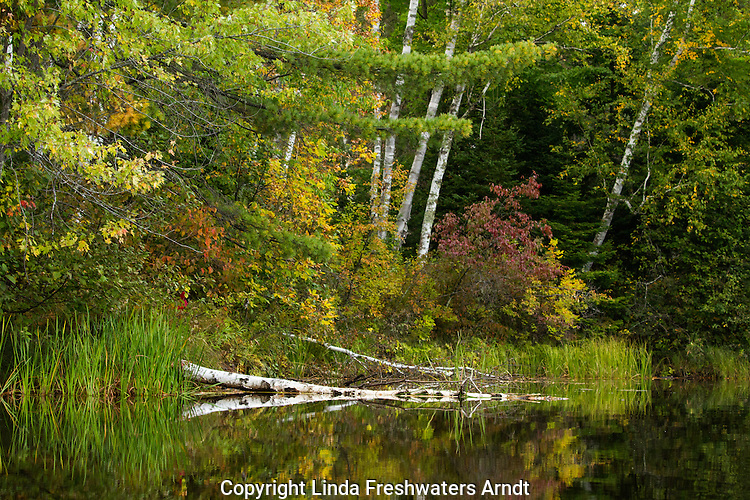 East fork of the Chippewa River