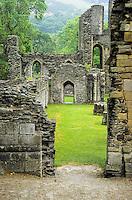 Wales, Valle Crucis Abbey, established 1201, near Llangollen.  Denbighshire.