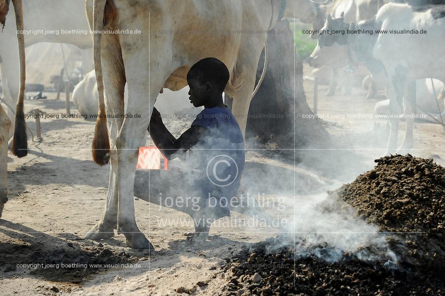 SOUTH SUDAN Bahr al Ghazal region , Lakes State, village Yeri cattle camp near Rumbek, Dinka boy Mathou, 11 years old, milking Zebu cow / SUED-SUDAN  Bahr el Ghazal region , Lakes State, Dorf Yeri, Dinka mit Zebu Rindern im cattle camp bei Rumbek , Junge Mathou 11 Jahre beim Melken