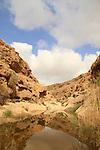 Ein Tzafit in the Negev