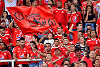 CALI - COLOMBIA, 16- 02-2019: Hinchas de América de Cali de Cali, animan a su equipo, durante partido entre América de Cali y Deportivo Independiente Medellín, de la fecha 5 por la Liga Águila I 2019 jugado en el estadio Pascual Guerrero de la ciudad de Cali. / Fans of America de Cali, cheer for their team, during a match between America de Cali and Deportivo Independiente Medellin, of the 5th date for the Liga Águila I 2019 at the Pascual Guerrero stadium in Cali city. Photo: VizzorImage / Nelson Ríos / Cont.