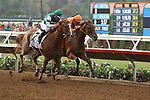 """DEL MAR, CA  JULY 30: #2 Stellar Wind and Victor Espinoza and Beholder and Gary Stevens in the stretch of  the Clement L. Hirsch Stakes (Gl) """"Win and You're in Breeders' Cup Distaff Division"""" at Del Mar Turf Club in Del Mar, CA on July 30, 2016. (Photo by Casey Phillips/Eclipse Sportswire/Getty Images)DEL MAR, CA  JULY 30: #2 Stellar Wind with Victor Espinoza beat Beholder and Gary Stevens in the Clement L. Hirsch Stakes (Gl) """"Win and You're in Breeders' Cup Distaff Division"""" at Del Mar Turf Club in Del Mar, CA on July 30, 2016. (Photo by Casey Phillips/Eclipse Sportswire/Getty Images)"""