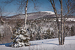 Snowy Schoodic Mountain in Hancock County, ME