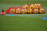 Several Nike official Serie A ball are seen on the pitch prior to the Serie A football match between Bologna FC and AC Milan at Renato Dall'Ara stadium in Bologna (Italy), January 30th, 2021. Photo Andrea Staccioli / Insidefoto