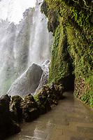 Guizhou Province, China.  Yellow Fruit Tree (Huangguoshu) Waterfall.  View from behind the Falls.