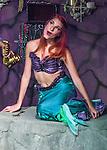 2015 A Mermaid's Dream