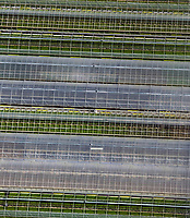 aerial photograph of commercial greenhouses, San Luis Obispo County, California