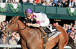 LEXINGTON, KY - OCTOBER 22: #12 Lightstream and jockey Julien Leparoux win the 18th running of The Lexus Raven Run Grade 2 $250,000  at Keeneland Race Course for owner Up Hill Stable and Head of Plains Partners and trainer Brian Lynch.  October 22, 2016, Lexington, Kentucky. (Photo by Candice Chavez/Eclipse Sportswire/Getty Images)