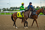 TORONT,CANADA-SEP 15: Pleasecallmeback is before the Summer Stakes at Woodbine Race Track on September 15,2019 in Toronto,Ontario,Canada. Kaz Ishida/Eclipse Sportswire/CSM