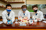 Mercy Mounthawk students Conor Bradshaw, Darragh Newsome and David Hughes are going forward to the BT Young Scientists Exhibition with their project called SPEC..