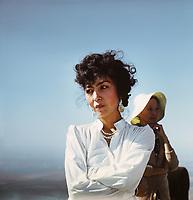 Восхождение на Фудзияму (1988)