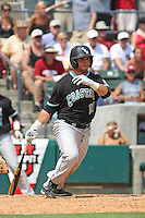 The Coastal Carolina University Chanticleers second baseman Tommy La Stella #11 at bat during the 2nd and deciding game of the NCAA Super Regional vs. the University of South Carolina Gamecocks on June 13, 2010 at BB&T Coastal Field in Myrtle Beach, SC.  The Gamecocks defeated Coastal Carolina 10-9 to advance to the 2010 NCAA College World Series in Omaha, Nebraska. Photo By Robert Gurganus/Four Seam Images