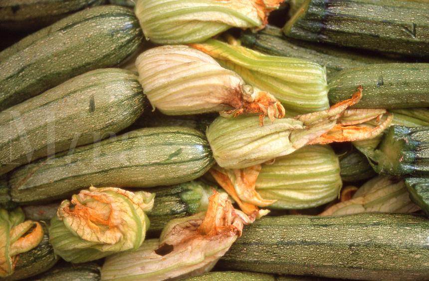 Zucchini vegetables