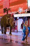 """Katy Perry Music Video, filmed on Fremont Street """"Waking up in Las Vegas """" include elephant on Fremont Street"""